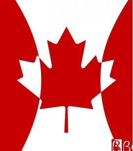 Gorro Silicona Canadá